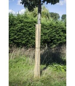Stambeschermer in bamboe