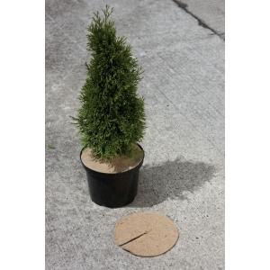 Disques anti-herbes