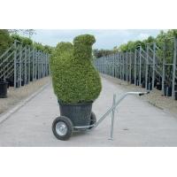 Planttransportkar